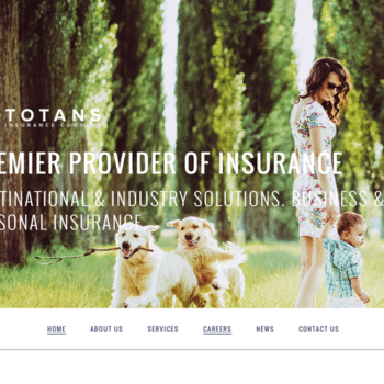 insurance firm website design